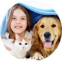 Stainmaster® PetProtect® Carpet: Pet-Friendly Carpet
